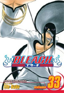 Bleach (Vol. 33)