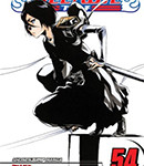 Bleach (Vol. 54)