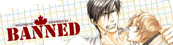 RightStuf Warns of BL Book Seizing at Canada Customs